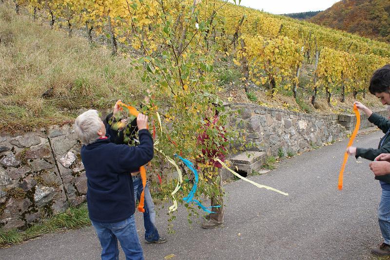2008-10-26 Traubenlese letzter Tag im Wintricher Simonsberg-43