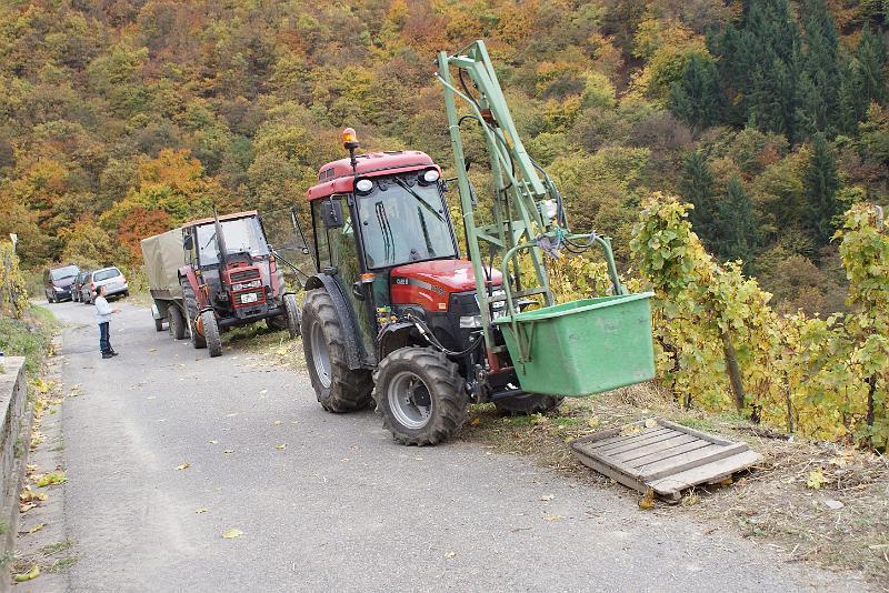 2008-10-26 Traubenlese letzter Tag im Wintricher Simonsberg-47