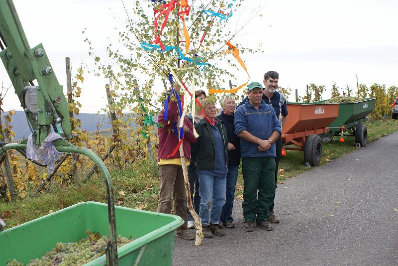 2008-10-26 Traubenlese letzter Tag im Wintricher Simonsberg-53